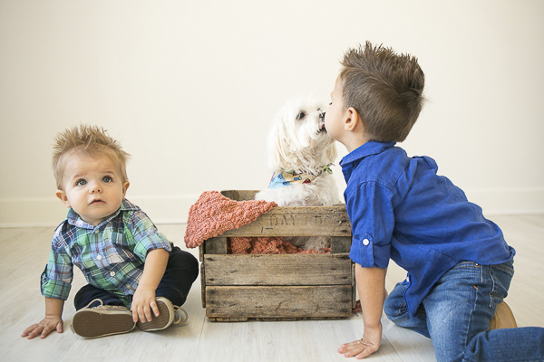 small white dog kissing little boy, dogs and kids, first birthday photographs