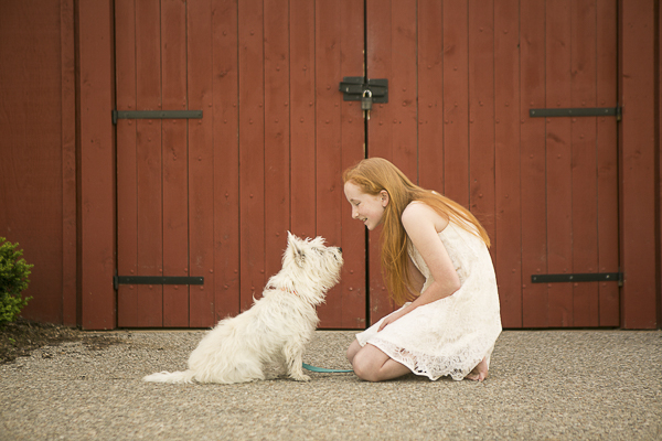 Westie looking up at young girl, bffs, lifestyle family dog photography