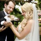 creative ways to include pets in weddings, wedding dog