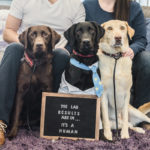 Happy Tails:  The Lab Results