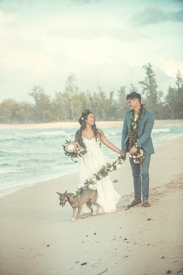 Hawaiian beach wedding dog