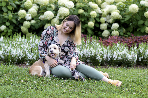 woman and dog sitting in grass in front flower bed, hydrangeas, love between woman and dog