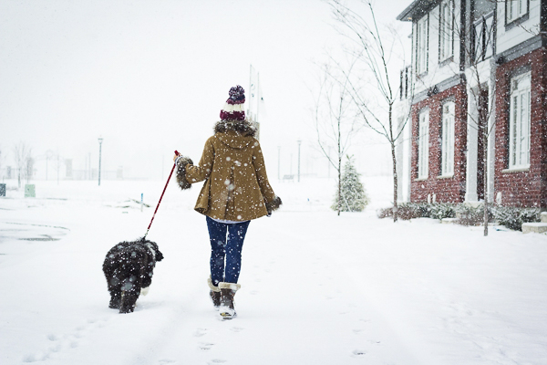 woman walking sheepdog mix in snow, woman in cute brown coat walking dog