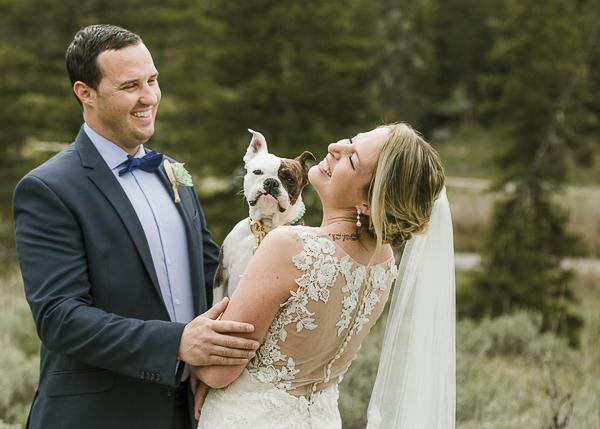 bulldog mix and wedding couple outside among evergreens, wedding dog ©Elements of Light Photography