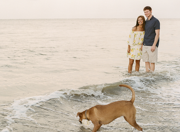 couple watching dog play in the waves, Boxer-Lab mix