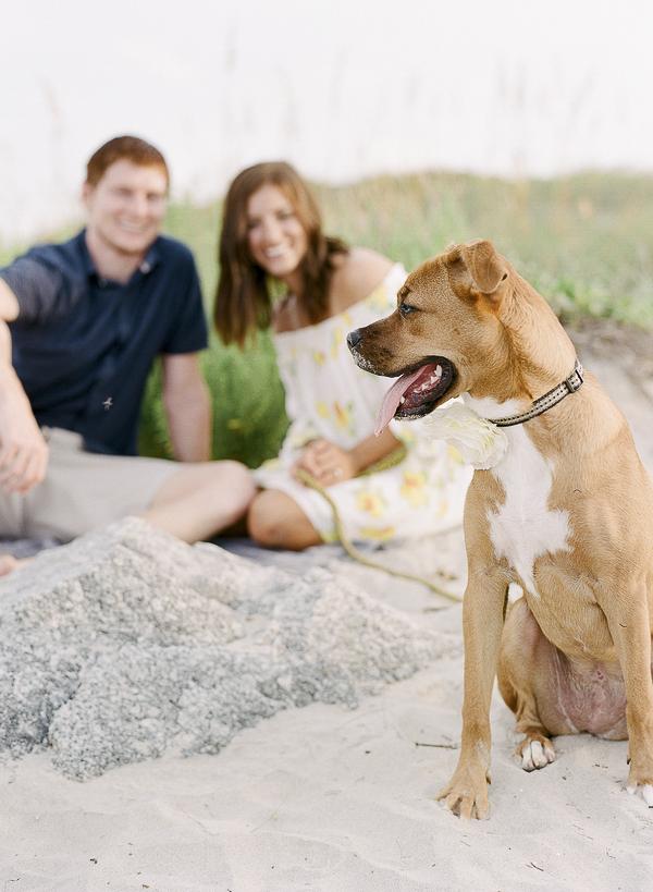 family-dog portraits at the beach, ©Rachel Craig Photography | Beach dog photography, Charleston, SC