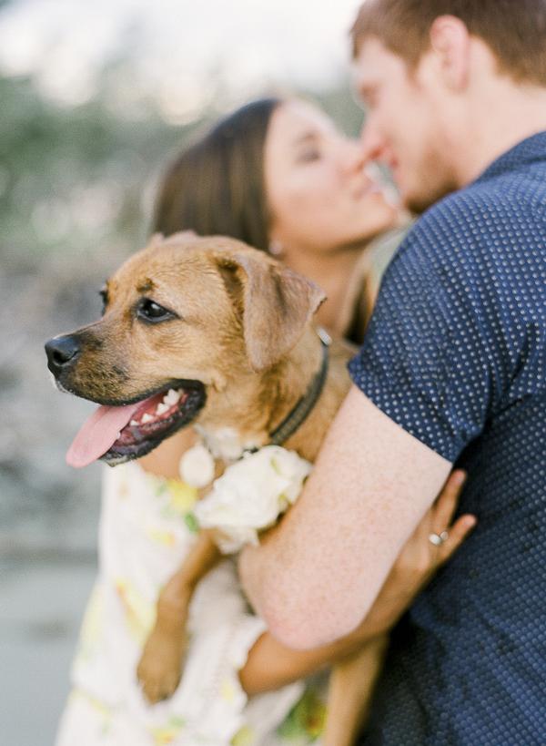 ©Rachel Craig Photography | lifestyle family, dog photography, Charleston, SC, couple holding dog, romantic pose