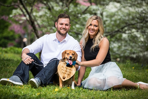 Beagle mix, engagement pictures with dog, dog wearing Engagement Announcement sign