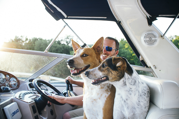 happy dogs enjoying a ride on the boat, Allegheny River engagement photos