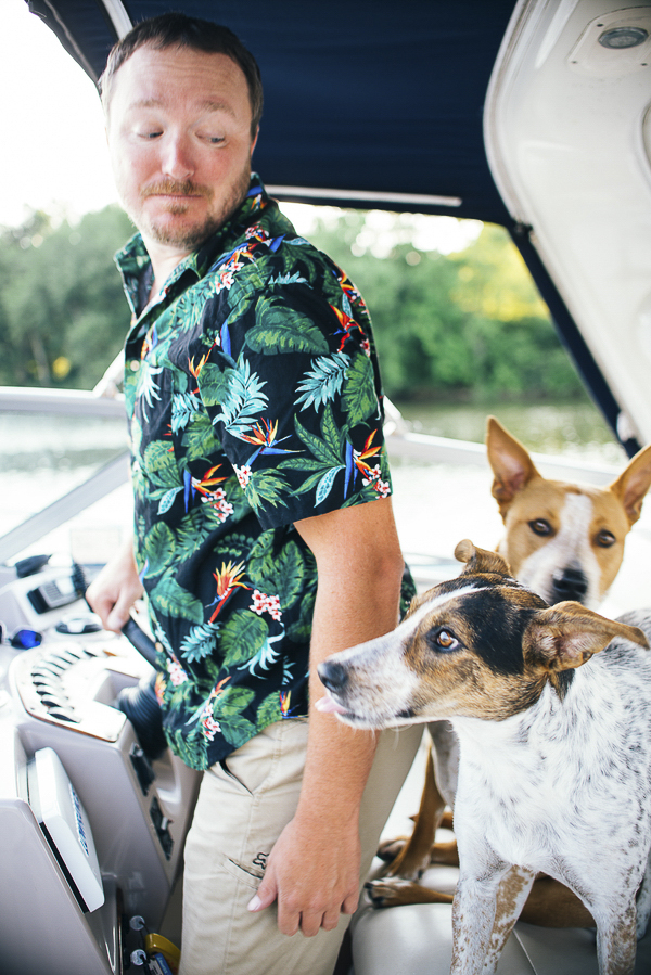 dog spotting, two dogs on a boat