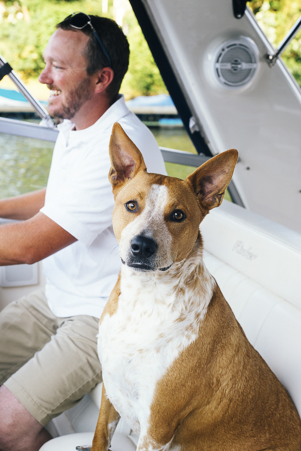 man's best friend, brown and white mixed breed sitting next to man driving a boat