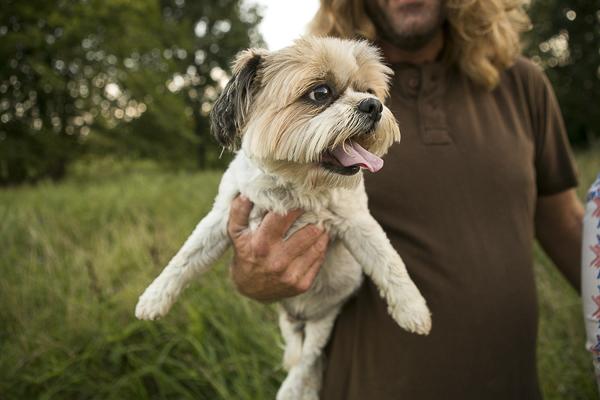 man holding Shih Tzu mix, man's best friend, lifestyle dog portraits