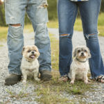 Happy Tails:  Buddy Love & Phoebe Yang