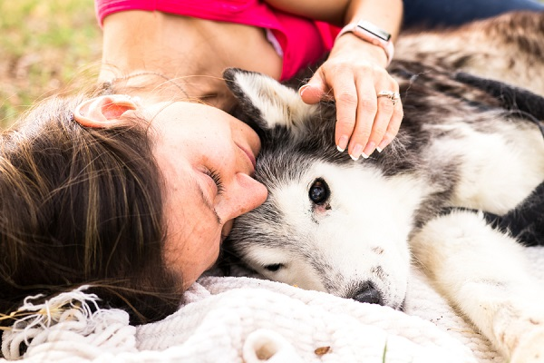 ©Carved Tree Photography | end of life session dog portraits, Siberian Husky, bond between humans and dogs
