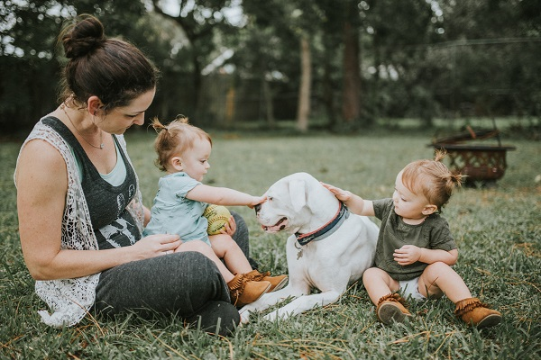 family photos with dog, end of life session for Boxer with Lymphoma, ©Love Mary Beth Photography