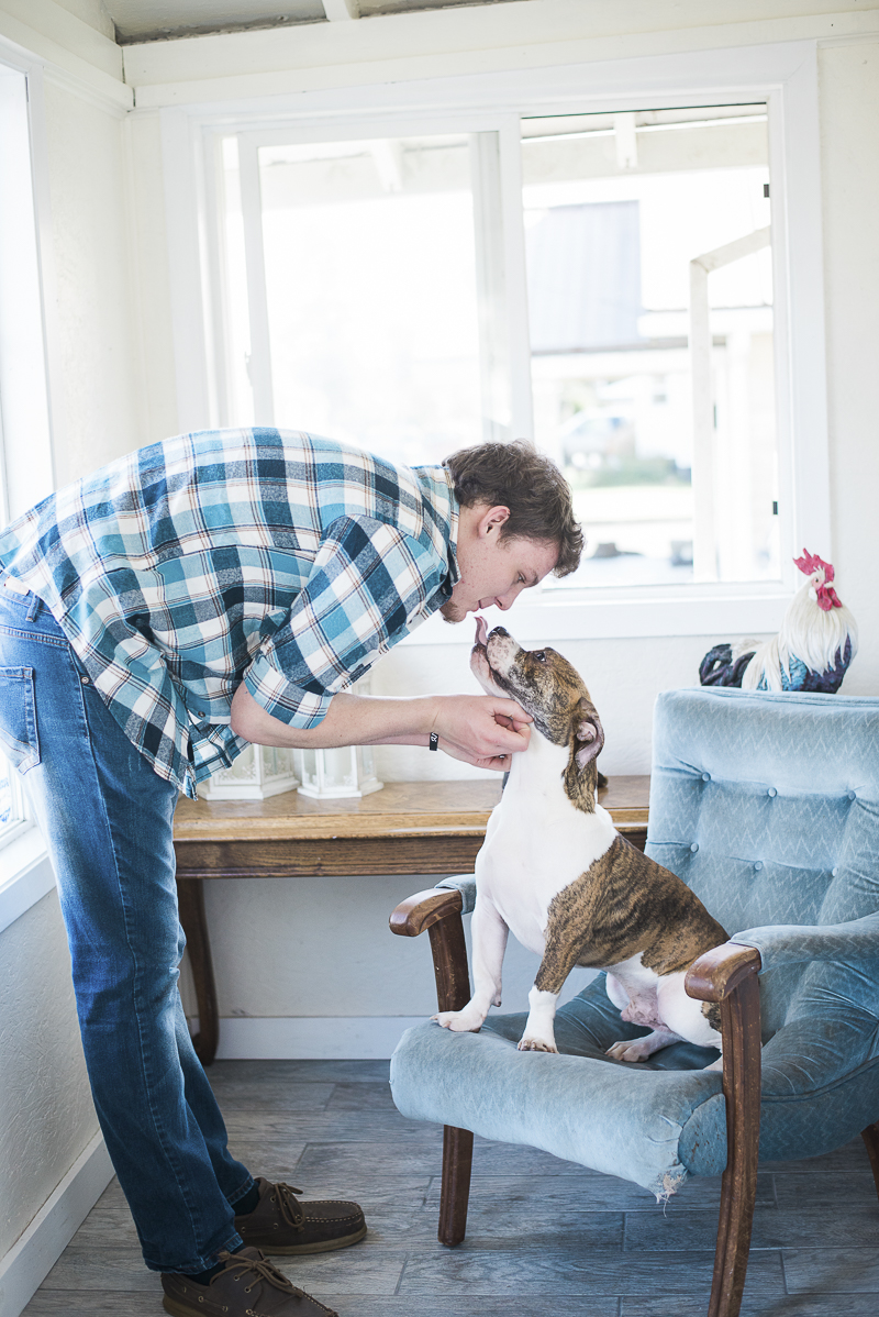 man's best friend, dog sitting in chair, ©Laurie Jean Photography | lifestyle dog photography
