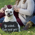 San Antonio Engagement Photos with a French Bulldog