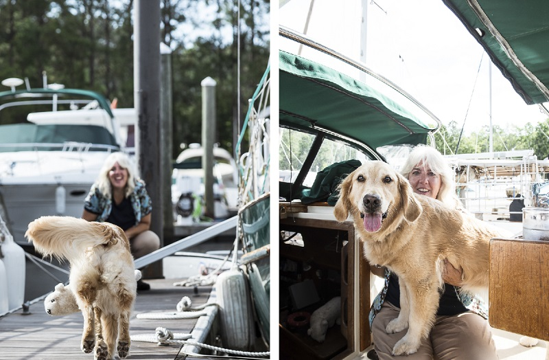 bond between dog and human, Honey the Golden Retriever at the marina