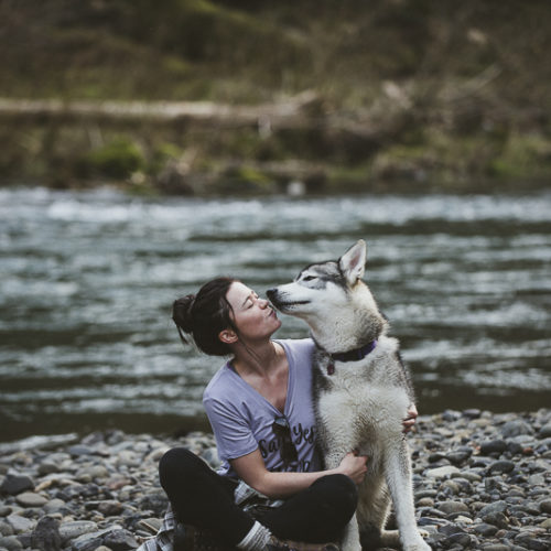Happy Tails:  Misha the Malamute | Tillamook State Forest