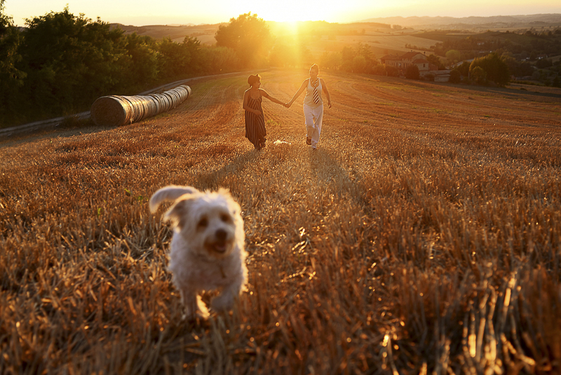 women holding hands in field while dog runs ahead, ©Martina Campola Photography | engagement photos with small dog, Alessandria, Italy