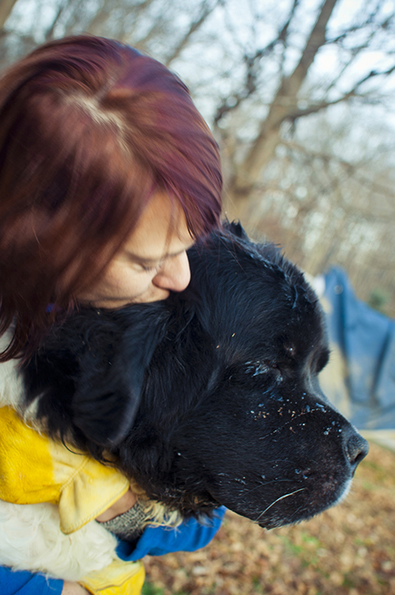 woman hugging Newf, ©Petcha Photography | Honor Life Sessions