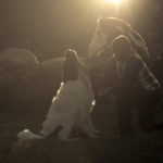 In Loving Memory: Major the Landseer Newfoundland