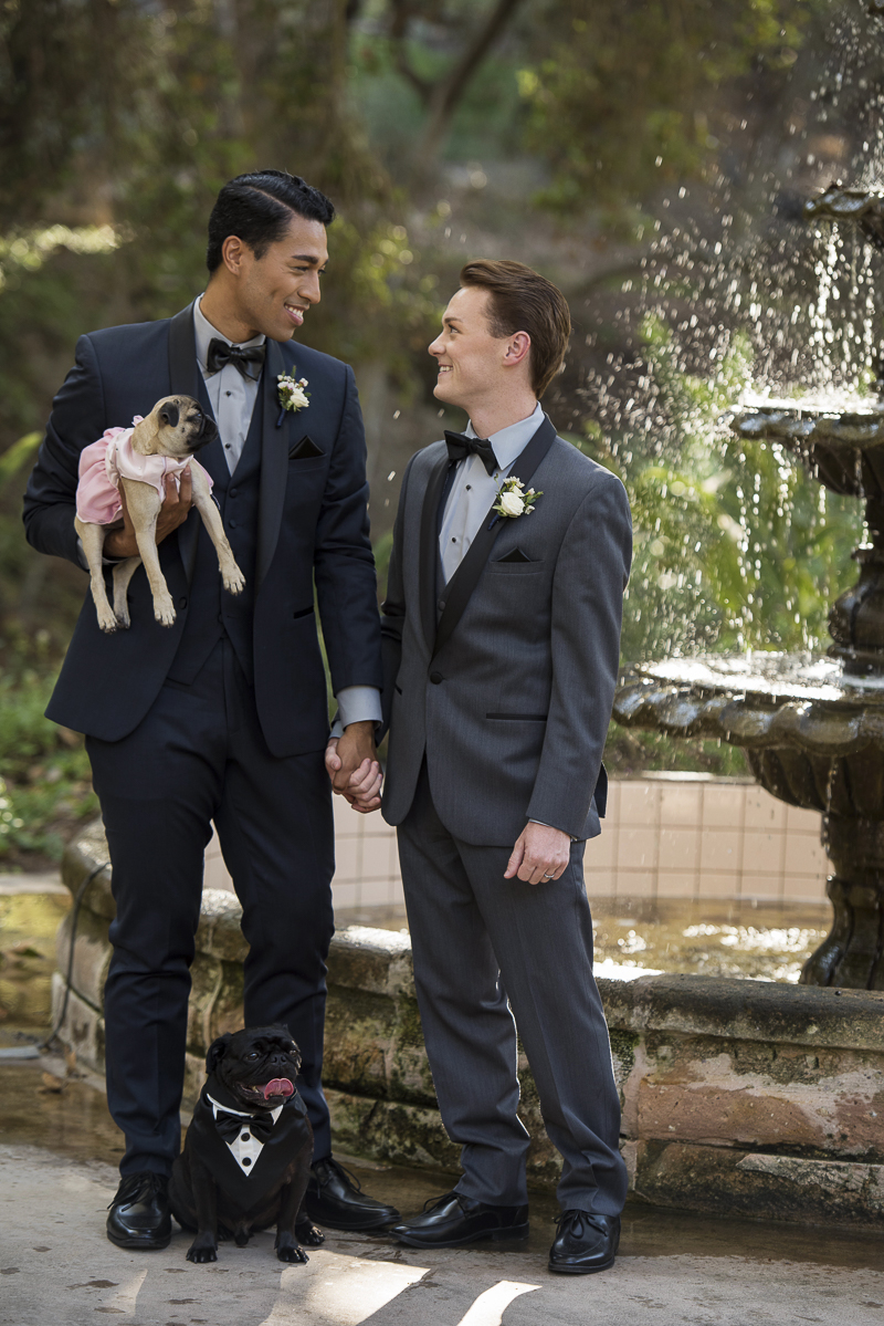 romantic anniversary photos of people with their dogs, ©Spotlight Studios | including dogs in wedding photos and anniversary photos