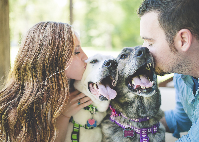 couple kissing their dogs' heads, ©Brandy Angel Photography | engagement photos with dogs