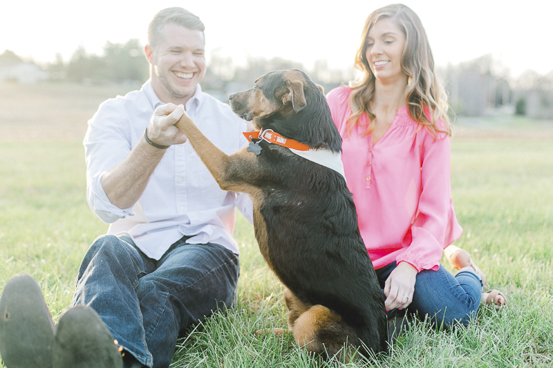 dog shaking man's hand | ©Casey Hendrickson Photography | Charlotte, NC Engagement photos with a dog