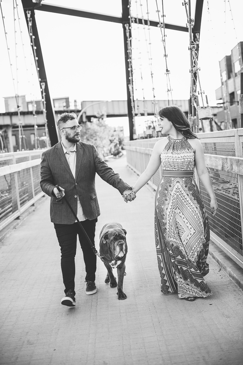 engaged couple holding hands and walking with their Mastiff | ©Cattura Weddings | engagement pictures with a Neapolitan Mastiff
