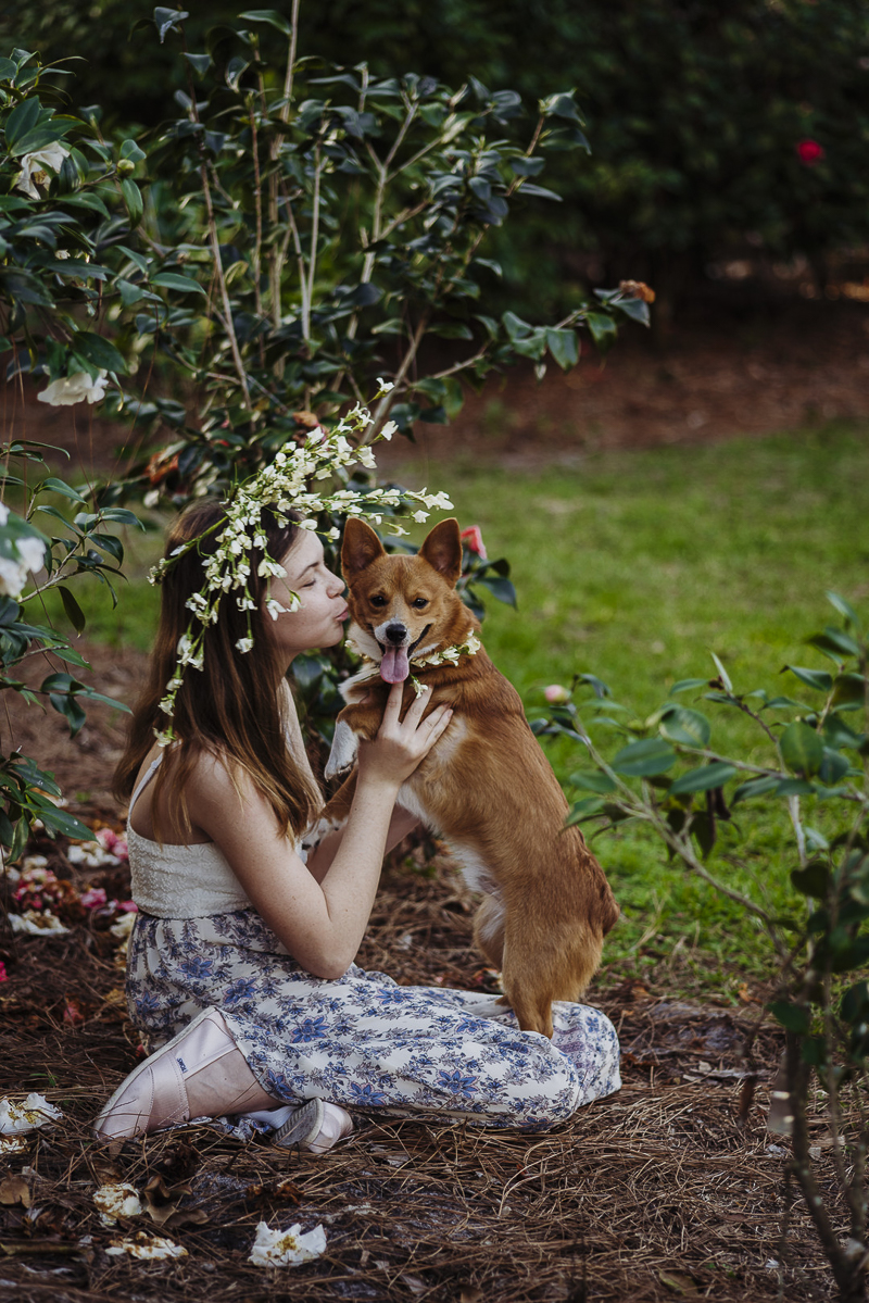 girl wearing white flower crown holding Corgi in floral collar, love between dogs and people | ©DR Photography | lifestyle family photography