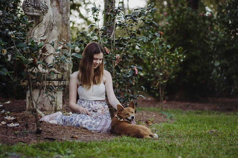 Corgi and his favorite person relaxing in rose garden | ©DR Photography | lifestyle family photography