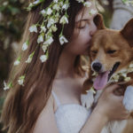 Happy Tails: Chevy the Corgi