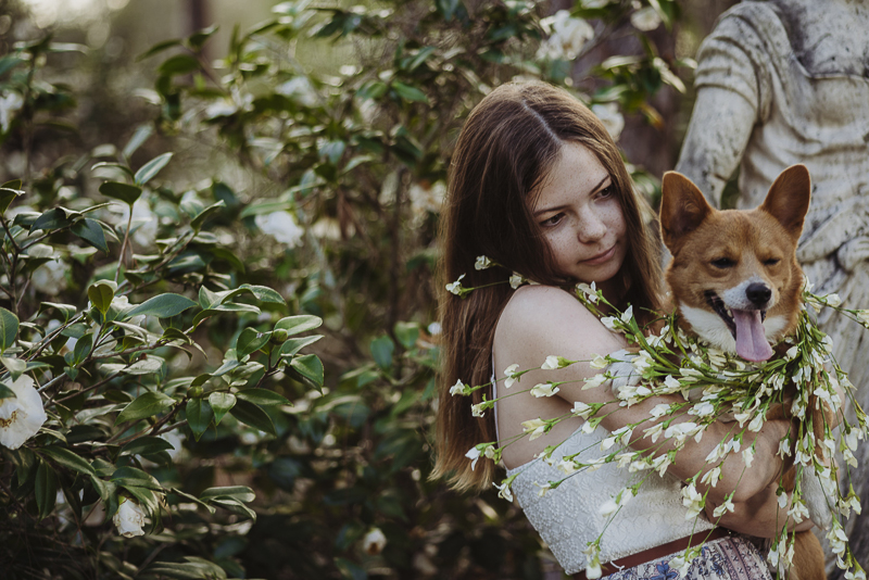 girl holding Corgi in rose garden, ©DR Photography | lifestyle family photography