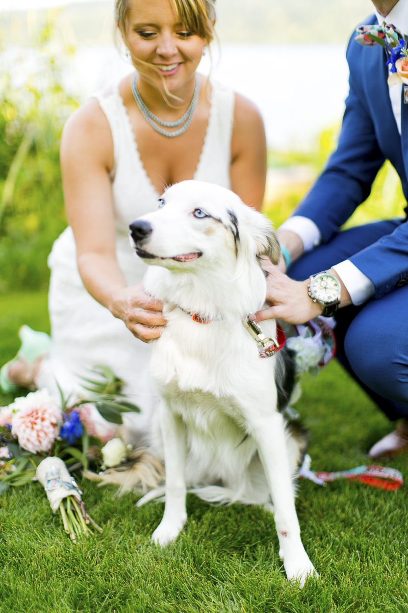 newlywed couple petting their dog, dog as flower girl ©Emma Lee Photography | Dogs in weddings
