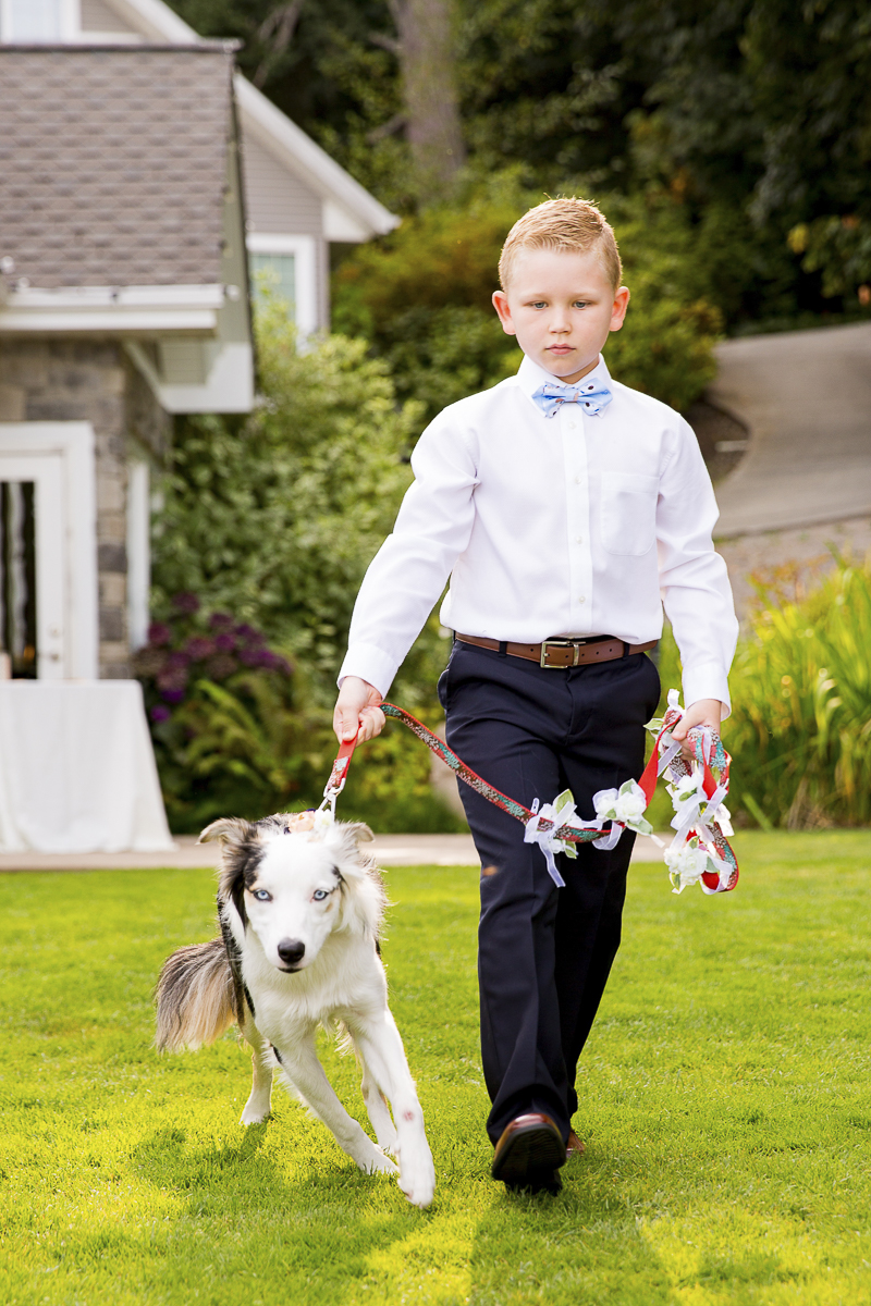 boy walking dog, ring bearer and canine flower girl, dogs in weddings ©Emma Lee Photography
