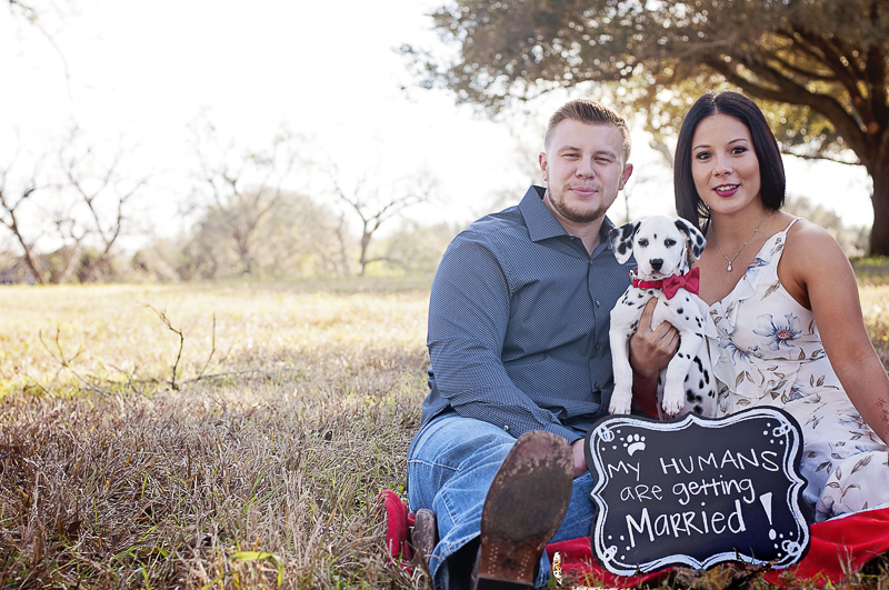 Rustic engagement photos with Dalmatian puppy, ©Kelly Urban Photography | Richmond, Texas