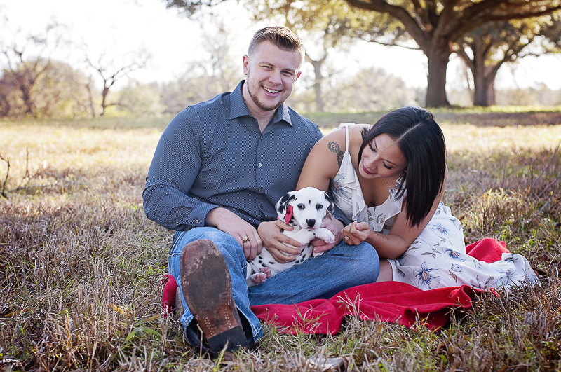 Dalmatian puppy wearing red bow tie sitting in laps of his family, ©Kelly Urban Photography | dog friendly engagement photos,