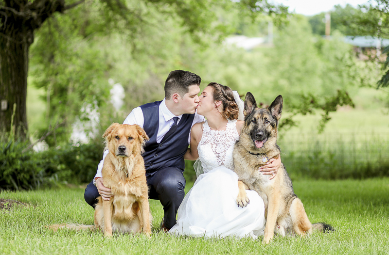 bride and groom kissing, German Shepherd leaning into bride's lap, dog friendly wedding | ©Shelby Chante' Photography