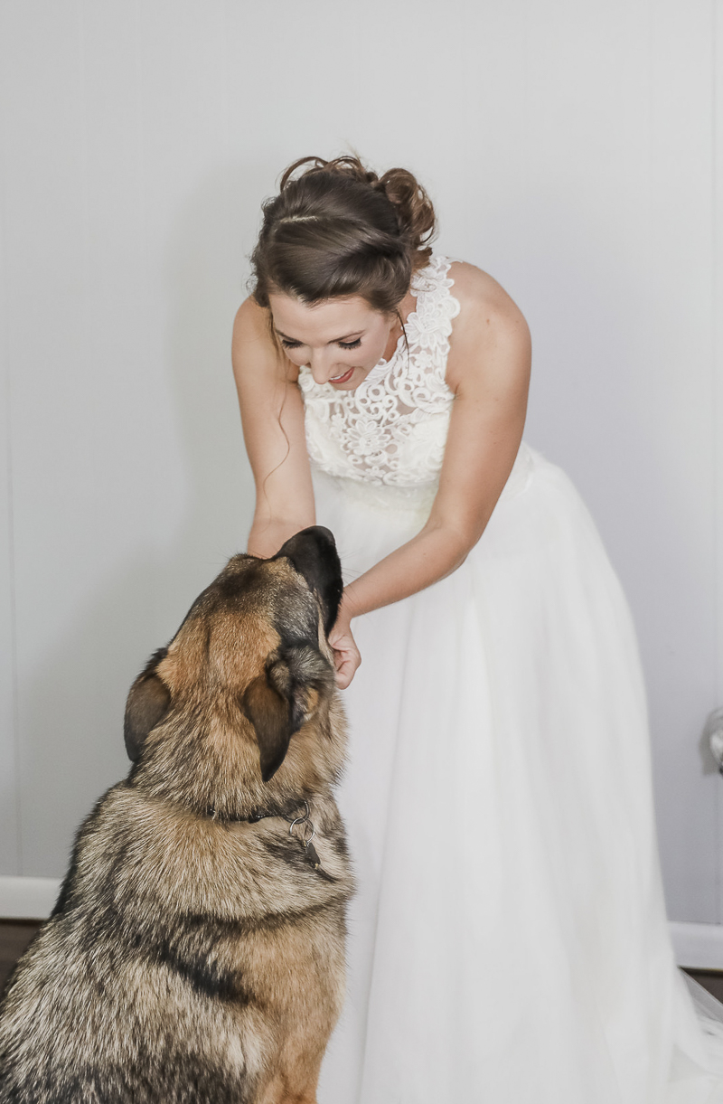 bride scratching dog's chin, ©Shelby Chante' Photography