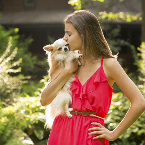 Dog Friendly Senior Portraits:  Tux the Chihuahua