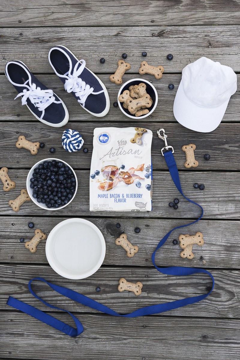 dog lover flatlay, Vita Bone treats, blueberries, sneakers, hat, water bowl | ©Alice G Patterson Photography