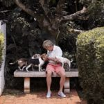 Happy Tails:  Champ, Chloe, and Sarah in Oahu, Hawaii