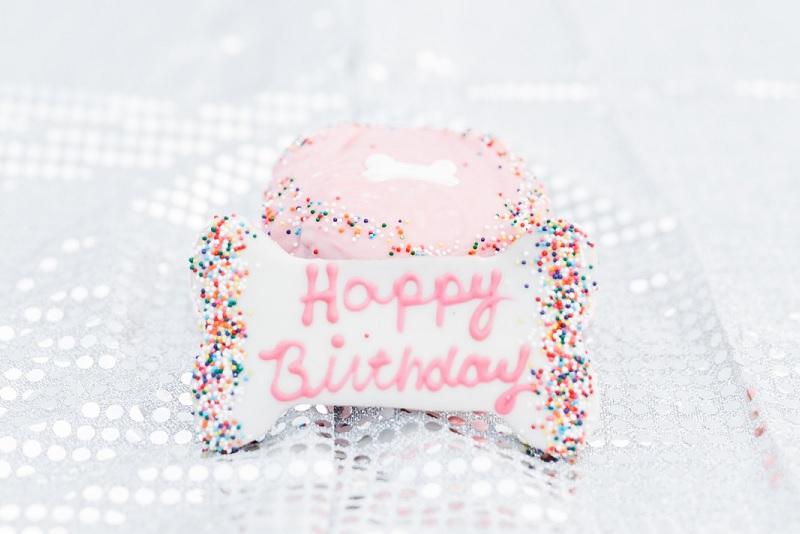 ©Ryan Greenleaf Photography - dog's first birthday cake