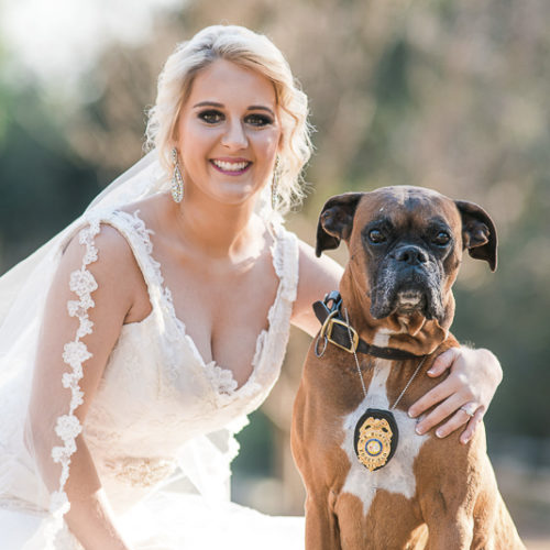Best Dog:  Diesel the Boxer