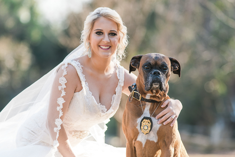Bride and her dog, Boxer wearing Police badge, ©Sugar Peach Productions | dog friendly bridal photos
