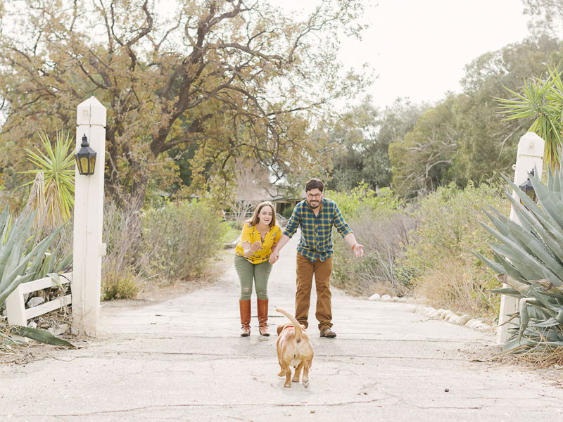 small brown dog running to his family, creative engagement photos