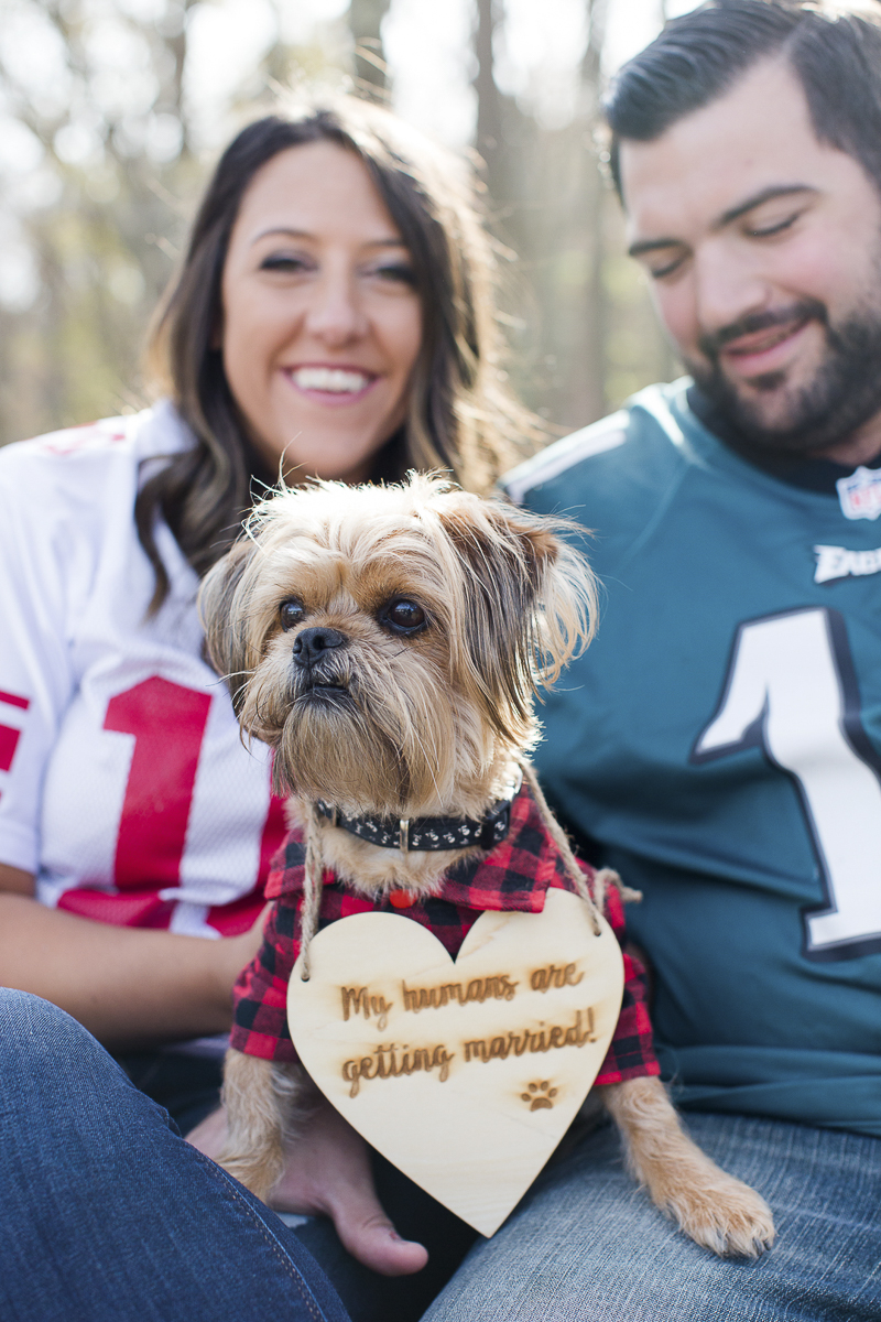 cute dog sitting on couple's laps, Fall engagement ideas, ©Limelight Entertainment Photography | dog friendly engagement session