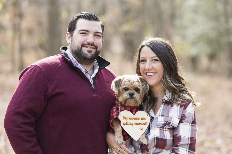 fall dog friendly engagement photos with small dog | ©Limelight Entertainment Photography