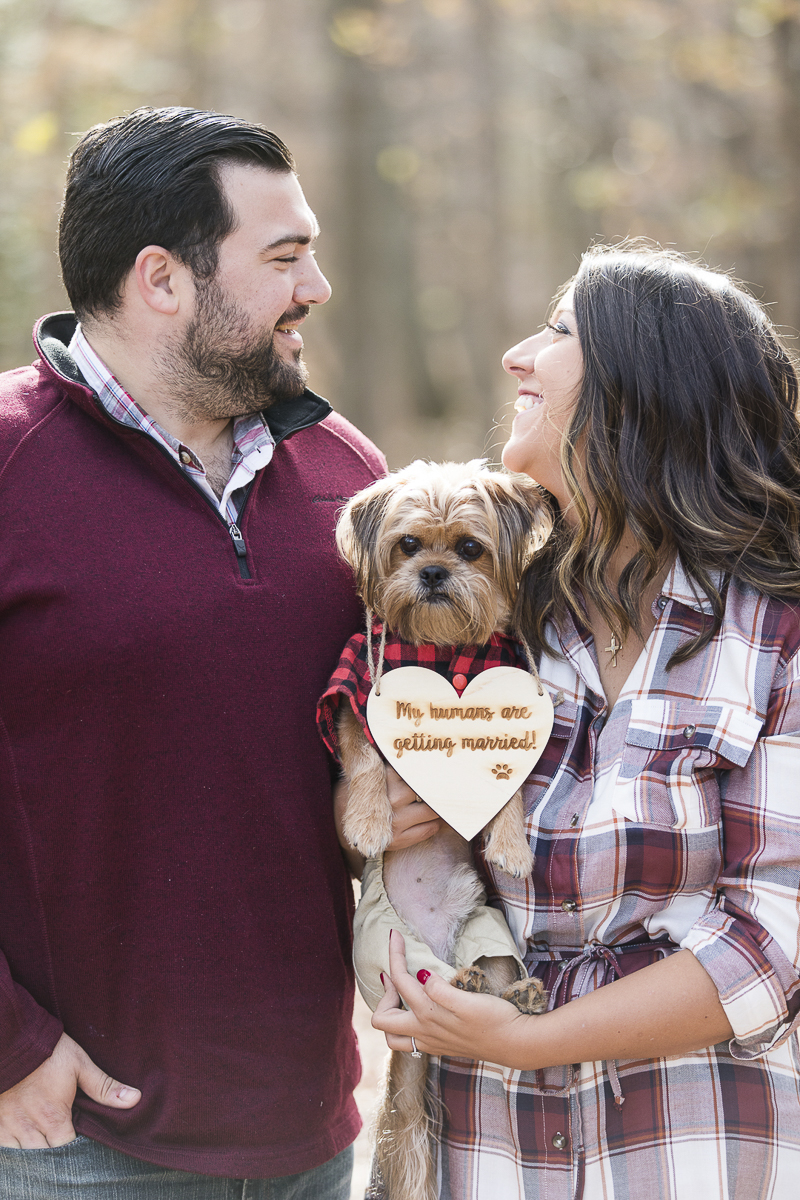 fall engagement portraits with a small dog, NJ engagement photographer | ©Limelight Entertainment Photography